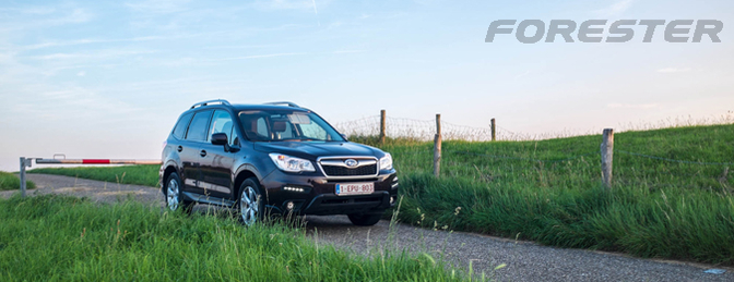 Subaru-forester-diesel-2013-rijtest