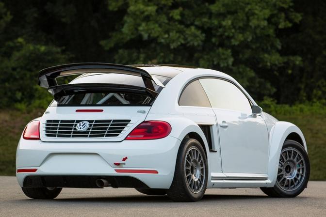 beetle-grc-2
