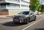 Lexus UX 250h 2019 grijs