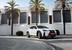 Lexus UX 250h 2019 wit