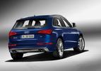 Audi SQ5 TDI officieel-6