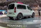 citroen-berlingo-mountain-vibe-concept-geneve-2015