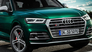 Audi SSQ5 TDI (2019)