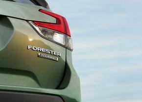 subaru-forester-2018-rearlight-teaser