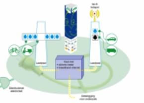 eva plant 220 elektrische palen in vlaanderen in 2012