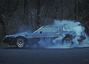 gif-trans-am-burnout